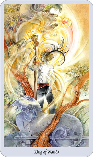 shadowscapes-tarot-wands-king